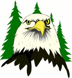 eagle_face_trees
