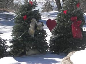 memorial trees for children 3