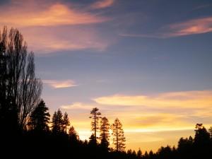 beautiful sunset, 2013