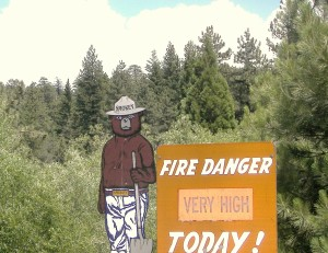 Even Smokey knows the fire danger is huge so pay attention and be careful. We need our forests intact!