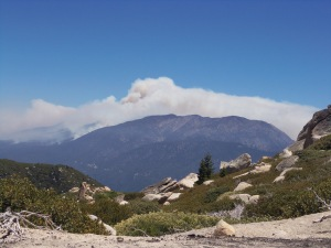 The Lake Fire in the San Gorgonio mountains.This photo was taken from the Keller Peak Lookout Tower on Friday, June 19.